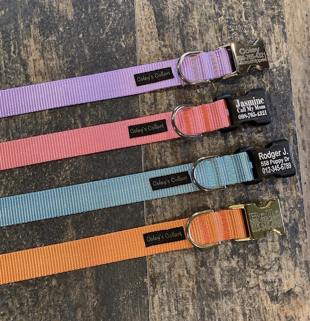 Engraved Buckle Nylon Collar Spring Colors