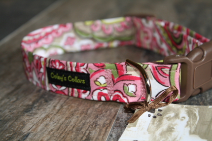 The Strawberry Limeade Paisley